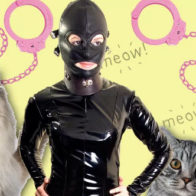 cats and bdsm